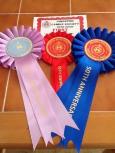 Oscars rosettes Kingston